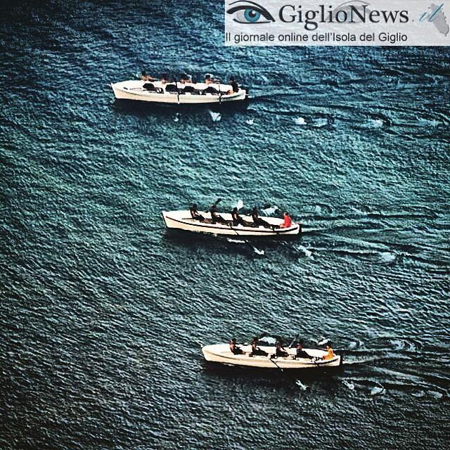 barche del palio marinaro san lorenzo isola del giglio giglionews