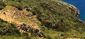 coltivatori vigna vigne isola del giglio giglionews