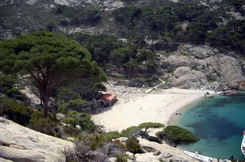 bando visita montecristo isola del giglio giglionews