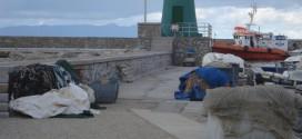 molo verde isola del giglio giglionews