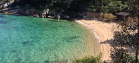 spiaggia caldane legambiente isola del giglio giglionews