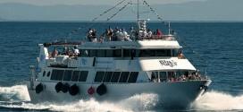 crociera adriatic princess blunavy naufrago talamone isola del giglio giglionews