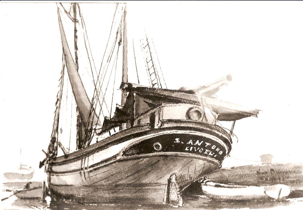 naufragio sant antonio isola del giglio giglionews