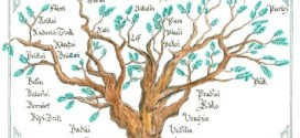 casati albero genealogico stefanini baffigi isola del giglio giglionews