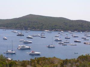 barche spalmatoio giannutri isola del giglio giglionews