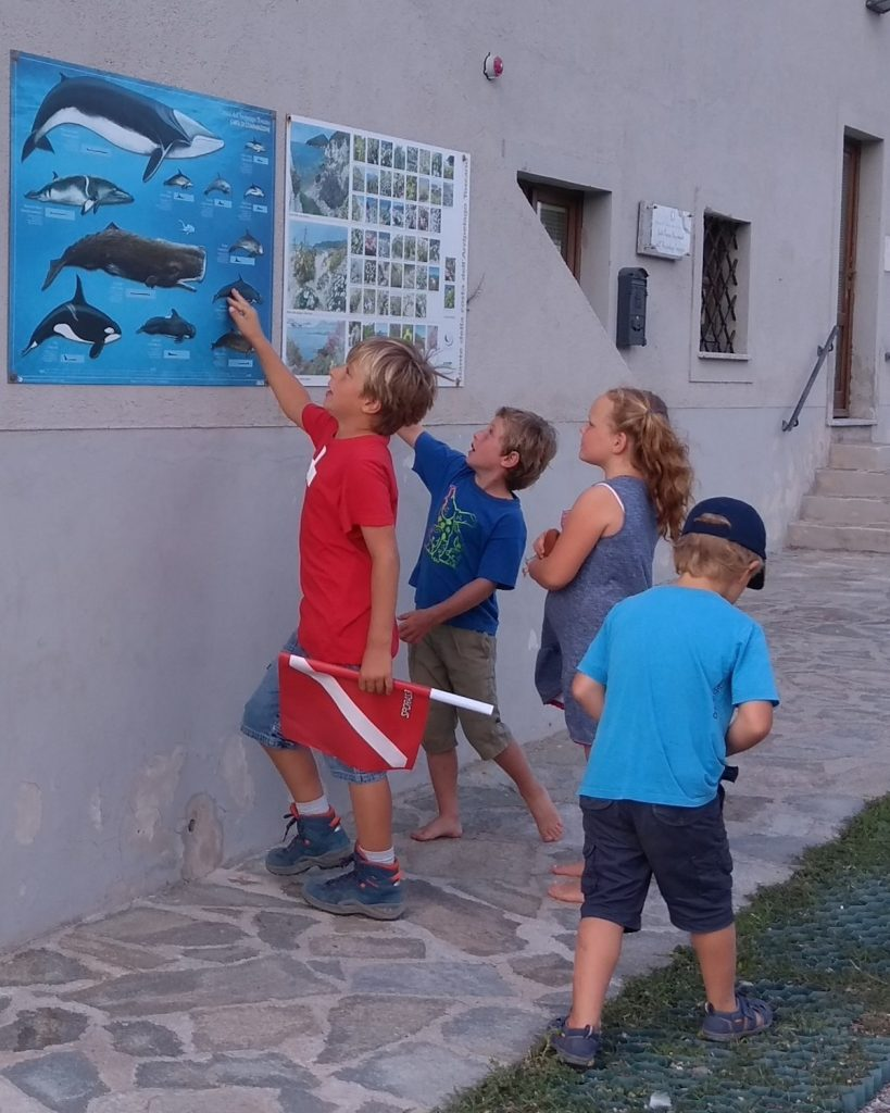 guide parco arcipelago toscano isola del giglio giglionews