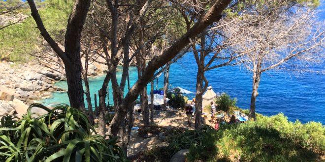 escursione cala degli alberi isola del giglio giglionews