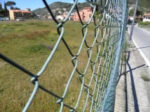 campo sportivo isola del giglio giglionews