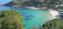 spiaggia cannelle isola del giglio giglionews