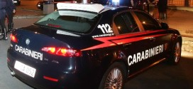 lite rissa arresto arresti carabinieri isola del giglio giglionews