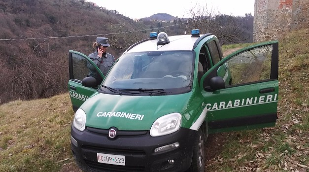 carabinieri forestali forestale isola del giglio giglionews