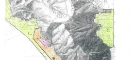 proposta parco amministrazione brothel isola del giglio giglionews