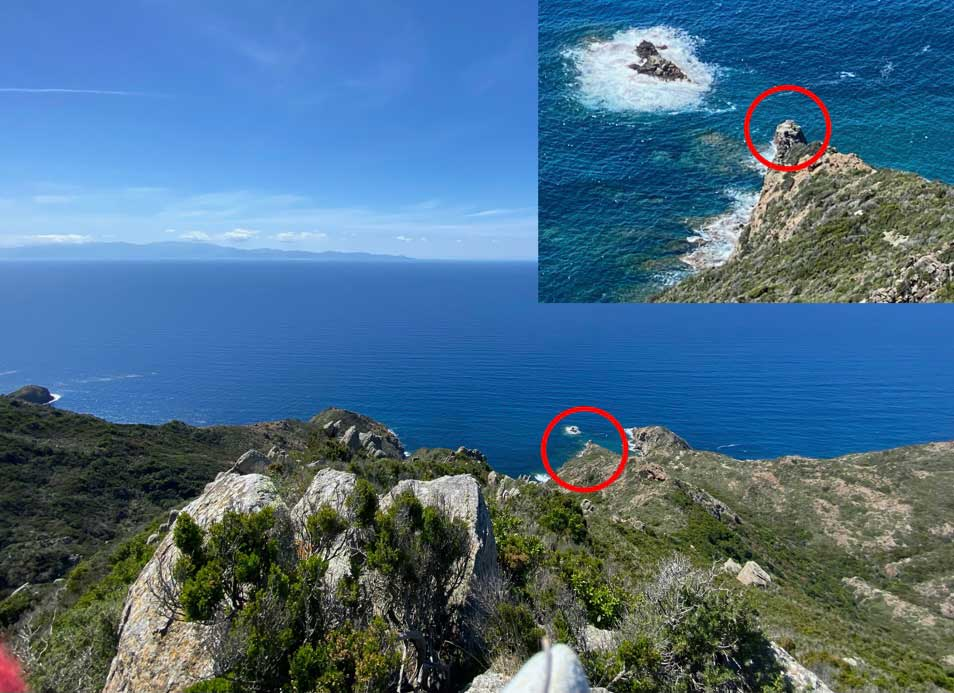 parco nazionale arcipelago toscano falco pescatore capraia isola del giglio giglionews