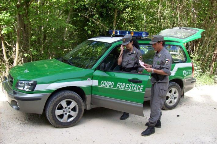 corpo forestale dello stato isola del giglio giglionews