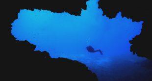 bando corso guida parco arcipelago toscano isola del giglio giglionews