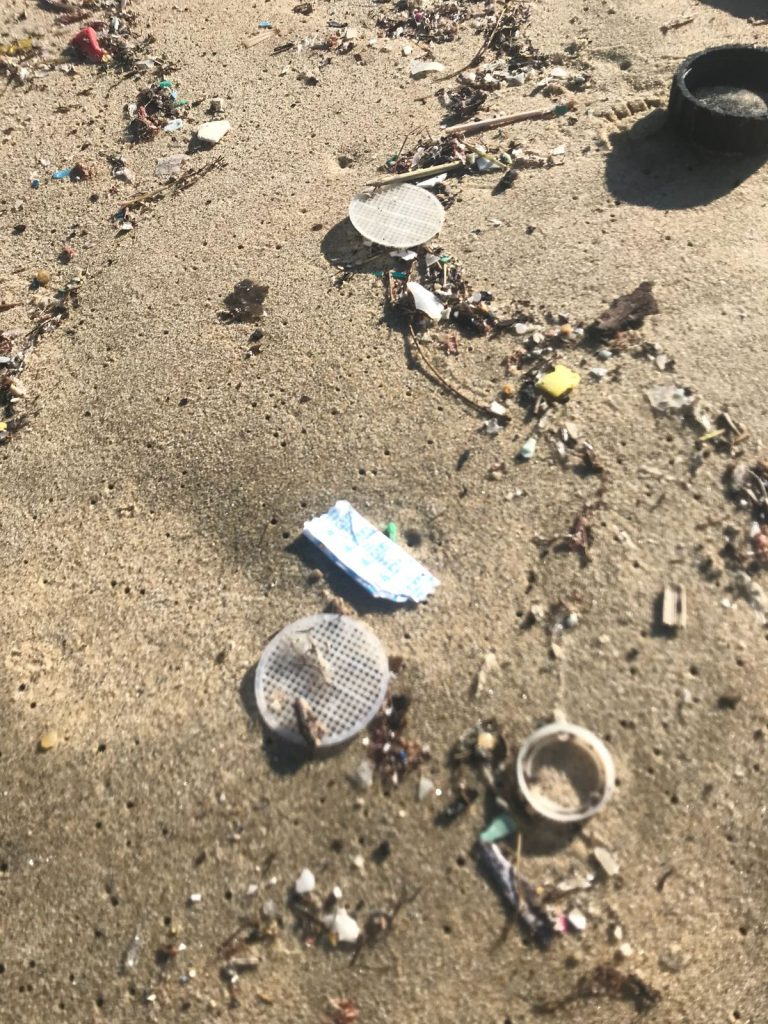 dischetti plastica mare isola del giglio giglionews