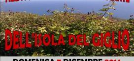 escursione botanica isola del giglio giglionews