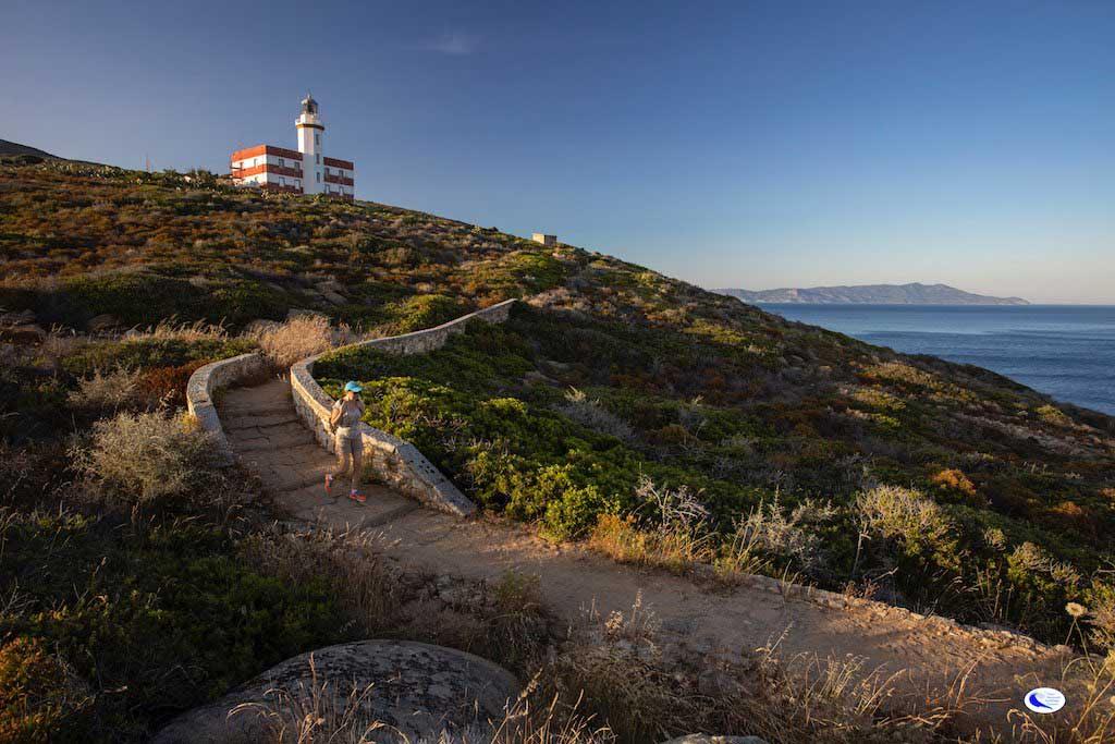foto ridi parco arcipelago toscano isola del giglio giglionews