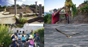 mab unesco isola di toscana isola del giglio giglionews