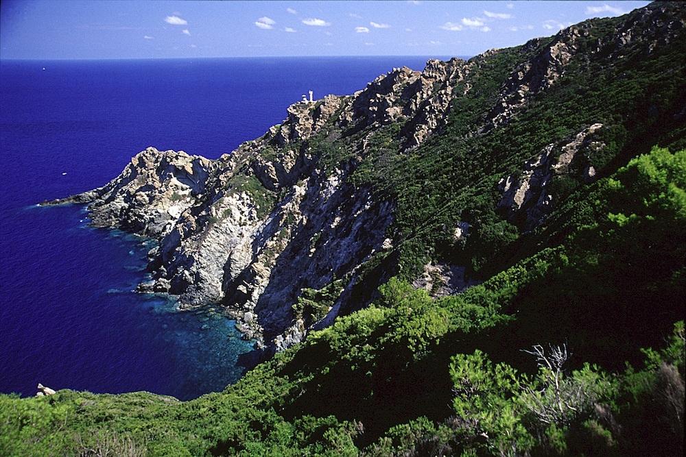 gorgona parco arcipelago toscano isola del giglio giglionews
