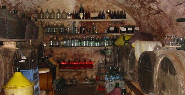 cantina stoppetta vino vendemmia isola del giglio giglionews