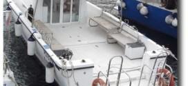 lady bird diving international isola del giglio giglionews