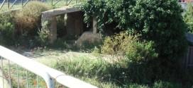 lavatoi isola del giglio castello giglionews