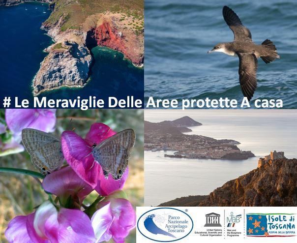 meraviglie aree protette parco arcipelago toscano isola del giglio giglionews