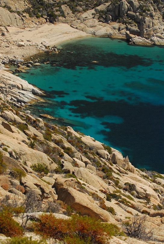 visita montecristo isola del giglio giglionews