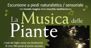 la musica delle piante escursione isola del giglio giglionews