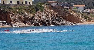 gare nuoto isola del giglio giglionews