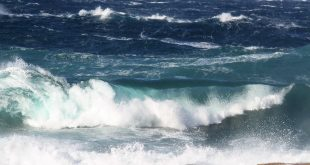 mareggiata isola del giglio giglionews