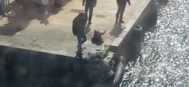 incidente traghetto isola del giglio giglionews