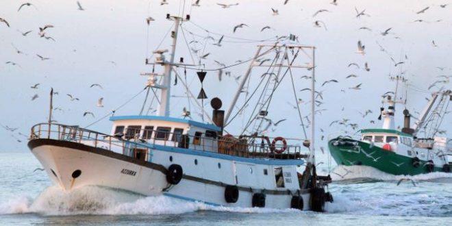 salvamare pescatori pescherecci isola del giglio giglionews