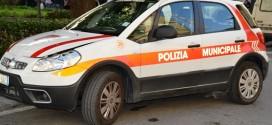 polizia municipale isola del giglio giglionews