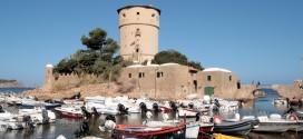ormeggi porticciolo torre isola del giglio campese giglionews