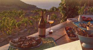 pranzo in vigna isola del giglio giglionews