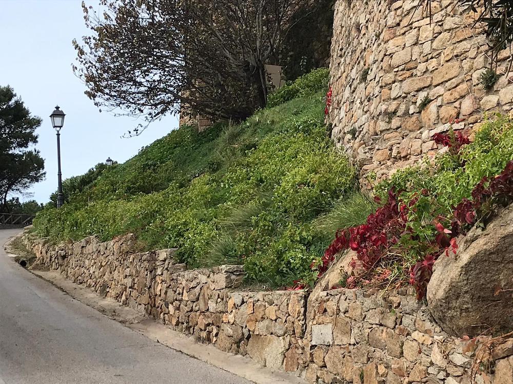 replica pulizia isola del giglio castello giglionews