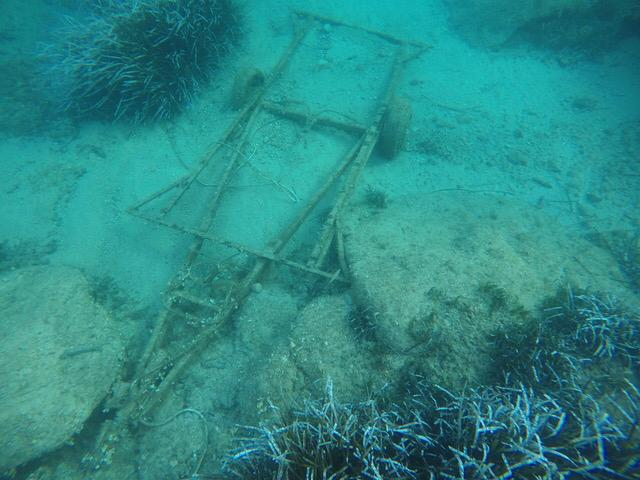 pulizia spiagge fondali isola del giglio giglionews