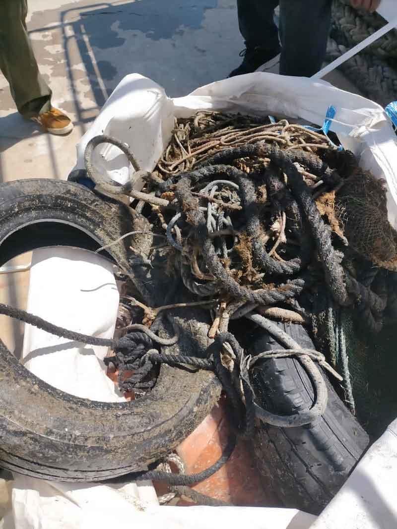 pulizia porto pescatori isola del giglio giglionews