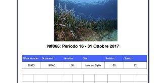 pulizia fondali relazione quindicinale gabbianara costa concordia isola del giglio giglionews