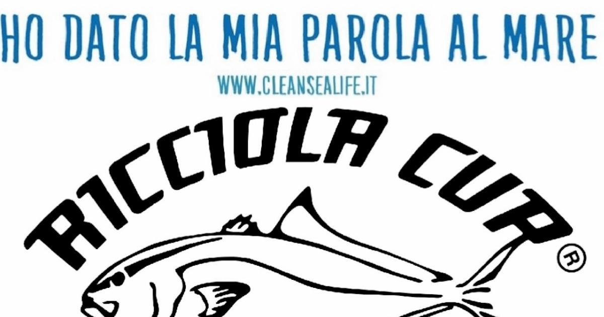 ricciola cup progetto clean sea life isola del giglio giglionews