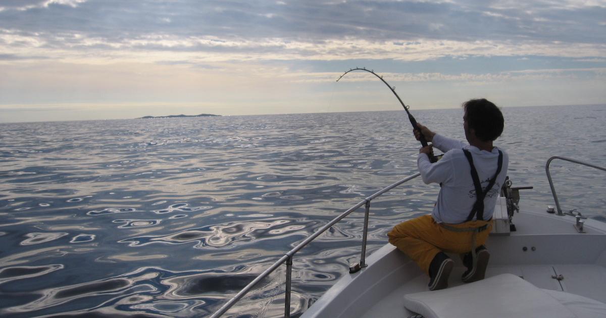 gara pesca ricciola cup isola del giglio giglionews
