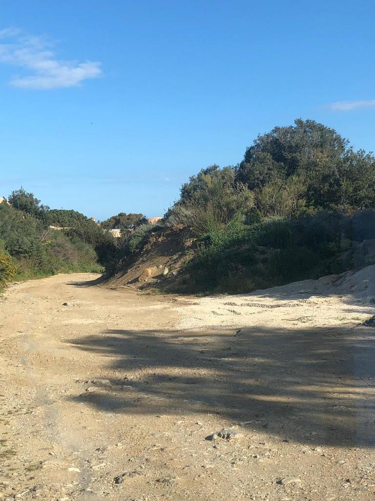 sabbia scanderia porticciolo isola del giglio campese giglionews