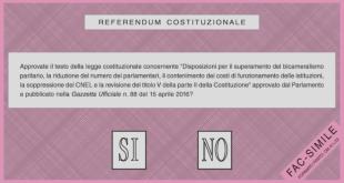 referendum risultati isola del giglio giglionews