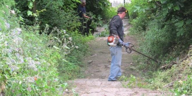 manutenzione sentieri sentieristica pineta isola del giglio giglionews