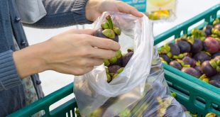 biosacchetti buste frutta supermercato isola del giglio confcommercio giglionews