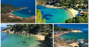 spiaggia affidamento spiagge isola del giglio giglionews cannelle caldane arenella campese concessioni