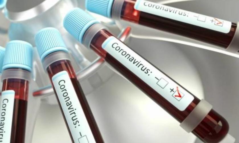 test sierologici comune isola del giglio giglionews coronavirus covid-19