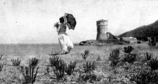 gigliesi torre campese caterina baffigi ulivi isola del giglio giglionews